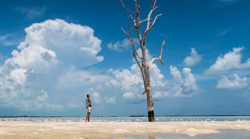 germanbackpacker.com: Harbour Island (Bahamas) Guide: Alle Sehenswürdigkeiten & Reisetipps!